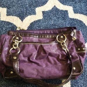 🚨DEAL ALERT🚨 Purple Kathy Van Zeeland Purse